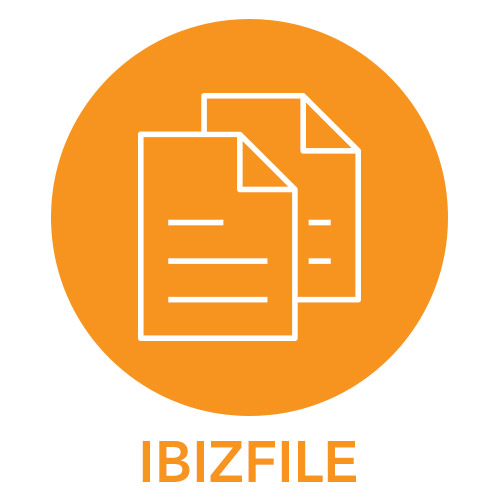 About-iBizfile