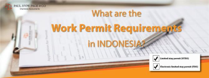 Indonesia Working Pass