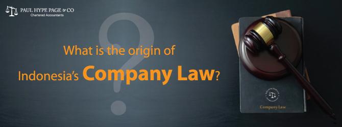 Indonesia's Company Law