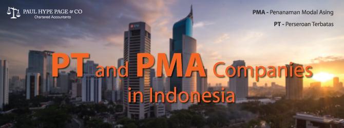PT & PMA Companies