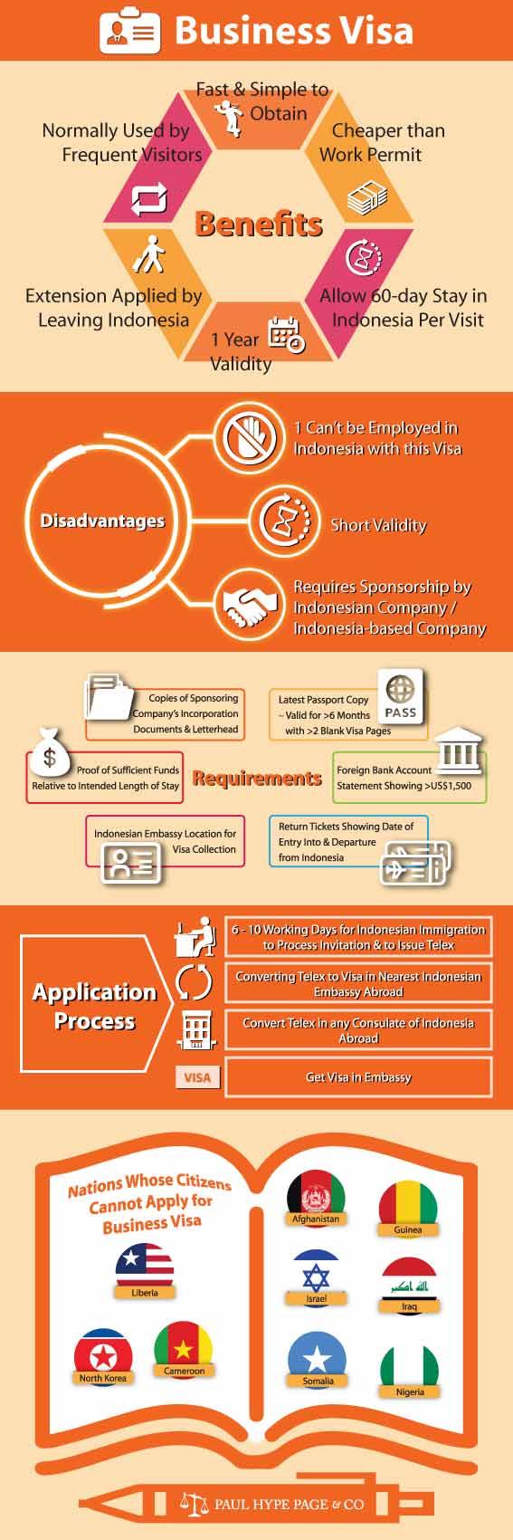 Business Visa Infographic